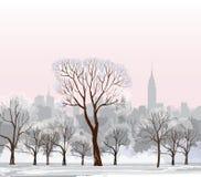 圣诞节冬天都市风景 雪中央公园 免版税库存图片