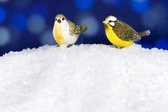圣诞节冬天鸟 免版税库存照片