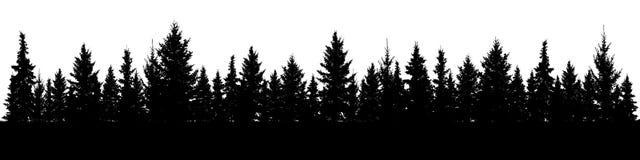 圣诞节冷杉木剪影森林  具球果云杉的全景 常青木头公园  向量例证