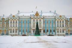 圣诞节冷杉木在凯瑟琳宫殿的背景中在一多云12月天 冬天在Tsarskoye Selo 圣彼德堡, 免版税库存照片