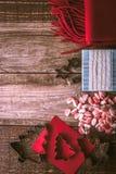 圣诞节准备集合垂直 免版税图库摄影