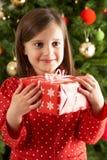 圣诞节前礼品女孩藏品结构树 库存照片
