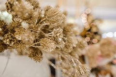 圣诞节包括闪烁的金黄植物的装饰元素 库存图片