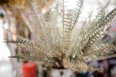 圣诞节包括闪烁的银叶病的装饰元素 免版税库存照片