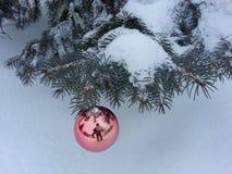 圣诞节反射 免版税库存图片