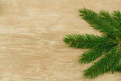 圣诞节和新年的概念 库存照片