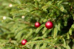 圣诞节和新年红色装饰 背景上色节假日红色黄色 眨眼睛诗歌选 圣诞树点燃瞬息 发光 库存照片