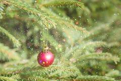 圣诞节和新年红色装饰 背景上色节假日红色黄色 眨眼睛诗歌选 圣诞树点燃瞬息 发光 库存图片