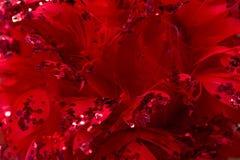 圣诞节和新年装饰:红色背景用羽毛装饰a 免版税库存图片