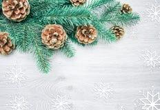 圣诞节和新年` s构成 杉木锥体,云杉的胸罩 库存图片