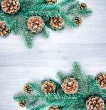 圣诞节和新年` s构成 杉木锥体,云杉的胸罩 免版税库存照片