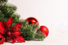 圣诞节和新年树枝和花 库存照片