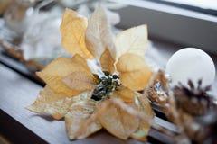 圣诞节和新年的花构成 库存照片