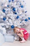 圣诞节和新年(2) 免版税库存照片