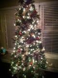 圣诞节哦结构树 库存图片
