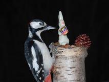 圣诞节啄木鸟 库存图片