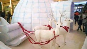 圣诞节园屋顶的小屋 免版税库存图片