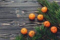 圣诞节图象舱内甲板位置 绿色冷杉分支用在r的蜜桔 库存照片