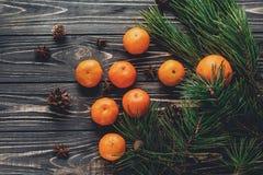 圣诞节图象舱内甲板位置 绿色冷杉分支用在r的蜜桔 免版税库存照片