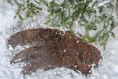 圣诞节在一个木板的杉树有雪的,冬天明信片框架背景 图库摄影