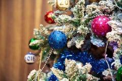 圣诞节在冷杉分支的装饰玻璃球 查出 免版税库存照片