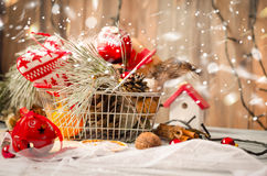 圣诞节在土气白色木背景wi的冬天装饰 免版税图库摄影