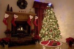 圣诞节在家 库存照片