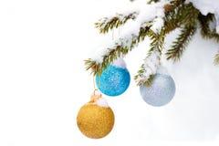 圣诞节在杉木的闪闪发光中看不中用的物品在一个多雪的森林里分支 免版税库存图片