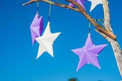 圣诞节在沙滩的杉树 庆祝新年度 图库摄影