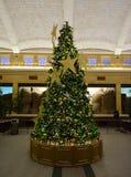 圣诞节在狮子议院里 免版税库存照片