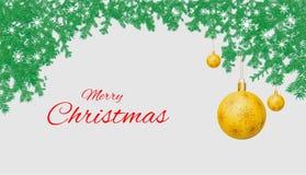 圣诞节在白色背景的杉木分支背景  免版税库存图片