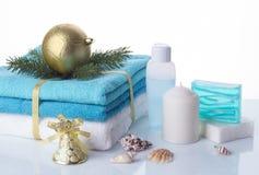 圣诞节在白色背景隔绝的温泉集合 库存图片