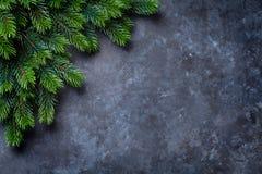 圣诞节在石头的杉树 库存图片