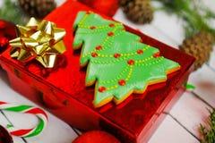 圣诞节在空白背景的姜和蜂蜜曲奇饼 冷杉查出的结构树白色 免版税库存照片
