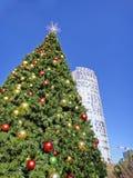 圣诞节在街市达拉斯:Klyde沃伦公园在达拉斯以一棵大圣诞树为特色 库存照片
