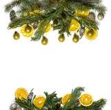 圣诞节在被隔绝的白色背景的杉树分支边界框架  免版税库存图片