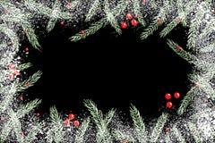 圣诞节在黑板的冷杉木分支 库存照片