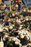 圣诞节在TIVOLI庭院里 免版税图库摄影