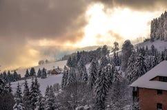 圣诞节在Todtnauberg雪的黑森林冬天 库存图片