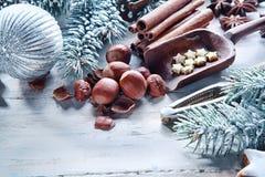 圣诞节坚果和香料背景 免版税库存图片