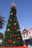 圣诞节夏天结构树 库存图片