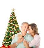 圣诞节夫妇年长的人 库存图片