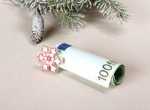 圣诞节奖金-与白色雪花的一百欧元 免版税库存照片