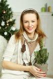 圣诞节妇女-微笑,愉快和美丽 免版税库存照片