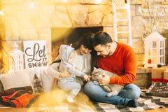 圣诞节妈妈爸爸儿子和猫 库存图片