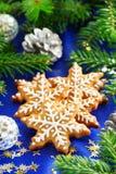 圣诞节姜饼曲奇饼 免版税库存照片