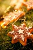 圣诞节姜饼 免版税图库摄影