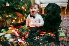 圣诞节婴孩和狗 免版税库存图片