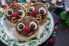 圣诞节孩子的乐趣食物 驯鹿薄煎饼 库存图片