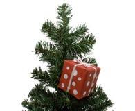 圣诞节小的结构树 免版税库存照片